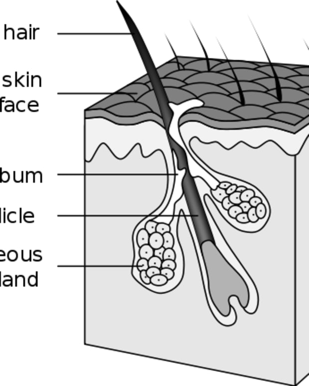 how-to-get-rid-of-blackheads-on-nose-with-easy-hygiene-tips