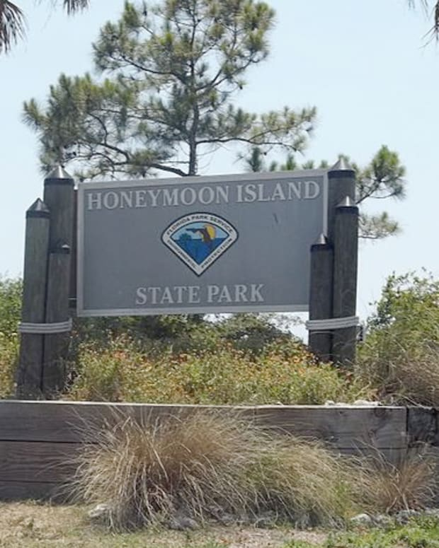 honeymoon-island-state-park-dunedin-florida
