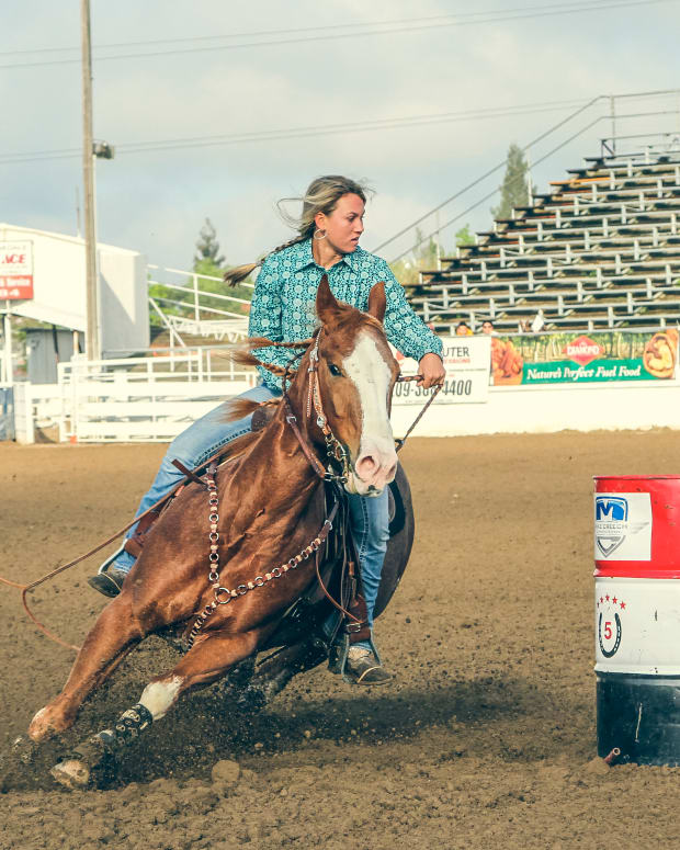 top-5-horse-breeds-for-barrel-racing