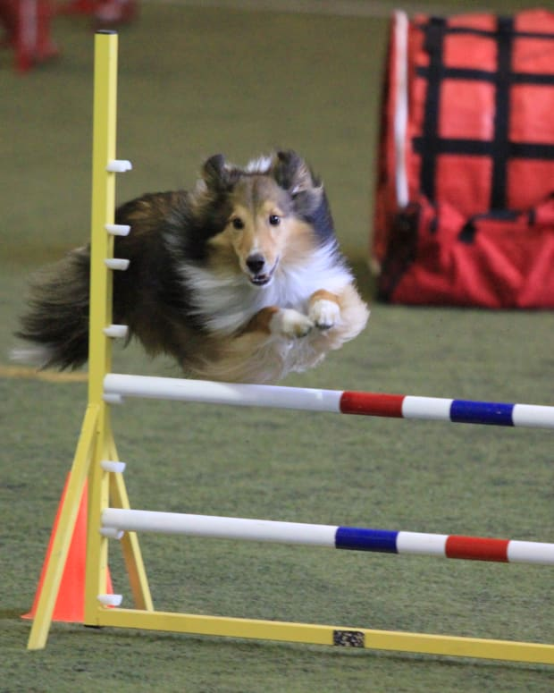 a-letter-to-agility-teams