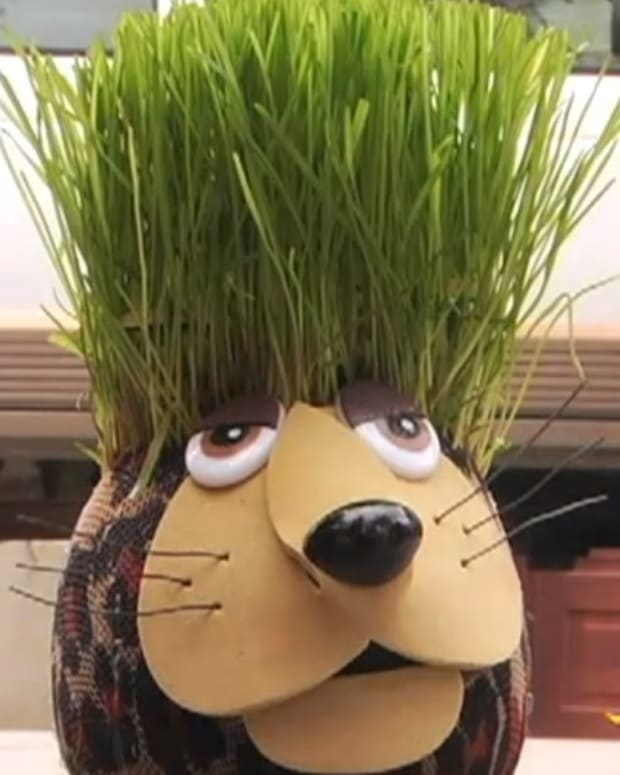 how-to-make-a-grass-head-grass-doll-step-by-step