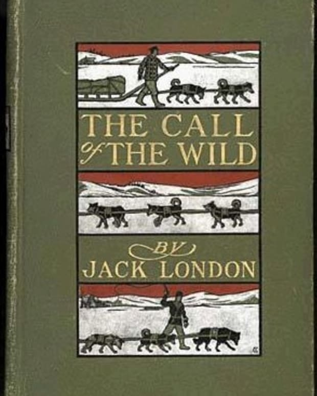 socialism-capitalism-and-nietzsche-in-jack-londons-call-of-the-wild