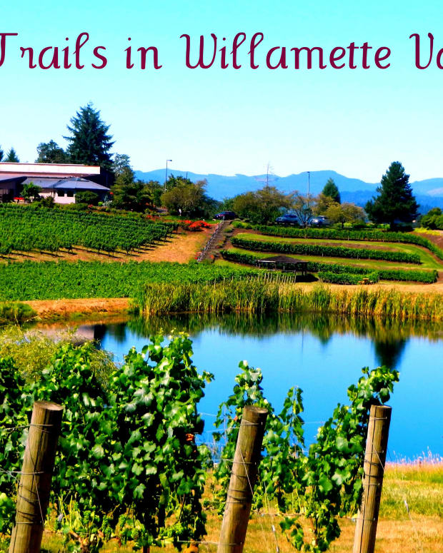 wine-trails-willamette-valley