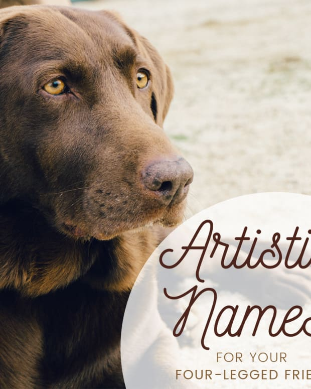 great-artist-dog-names