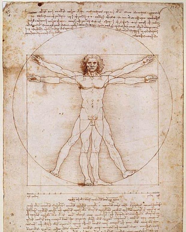 leonardo-da-vincis-vitruvian-man-explained