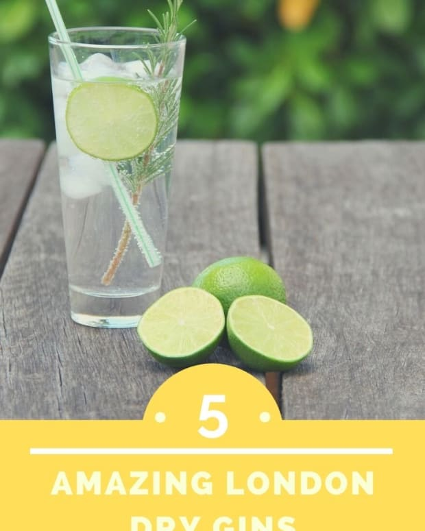 the-5-best-gins-in