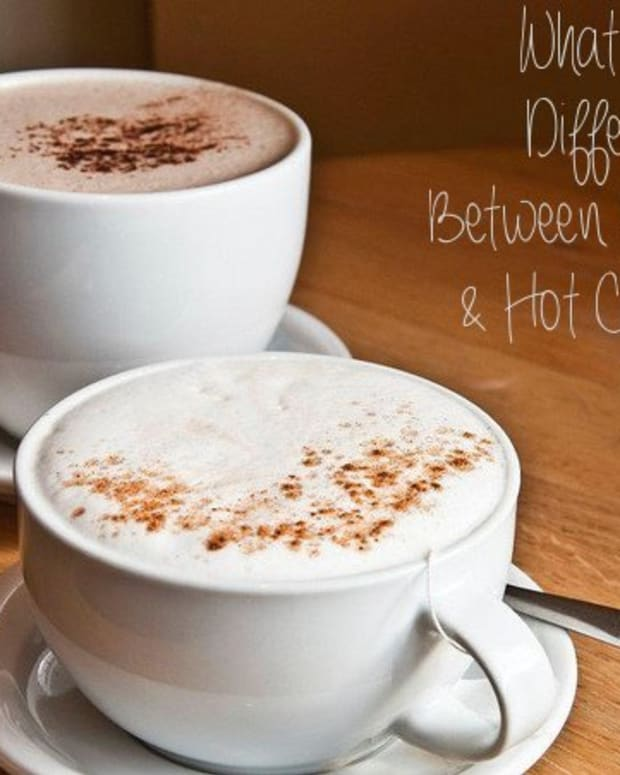 what-is-the-difference-between-hot-chocolate-and-hot-cocoa