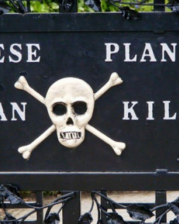 top-10-poisonous-plants
