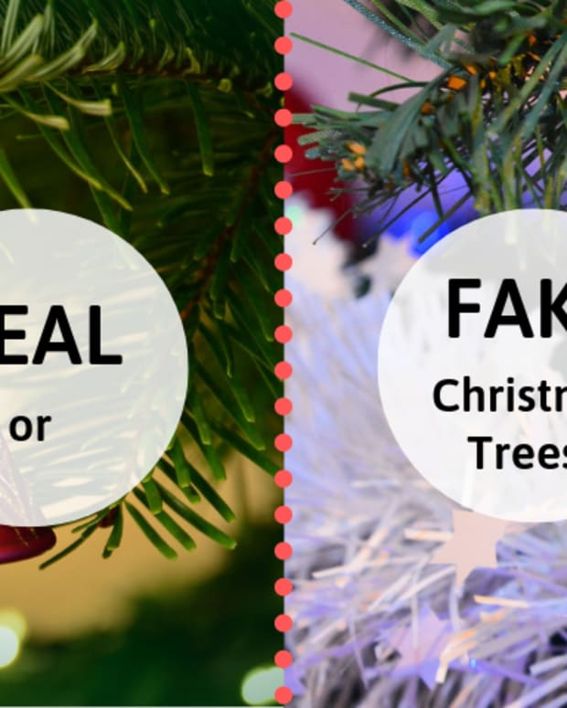 christmas-trees-are-real-or-fake-trees-better
