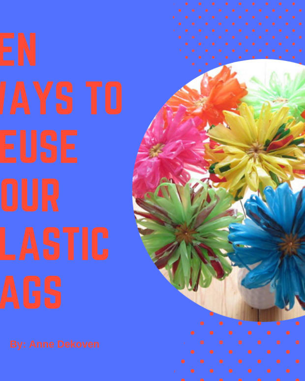 ten-ways-to-reuse-your-plastic-bags