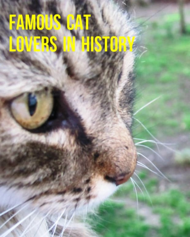 cat-ladies-and-dudes-famous-women-and-men-in-history-and-the-love-of-cats