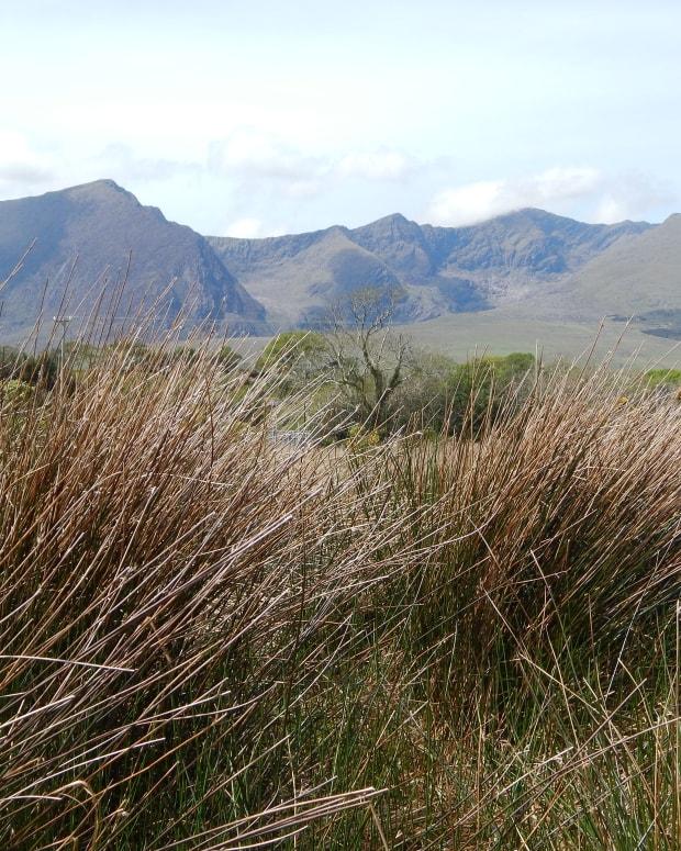 exploring-the-loch-adin-valley
