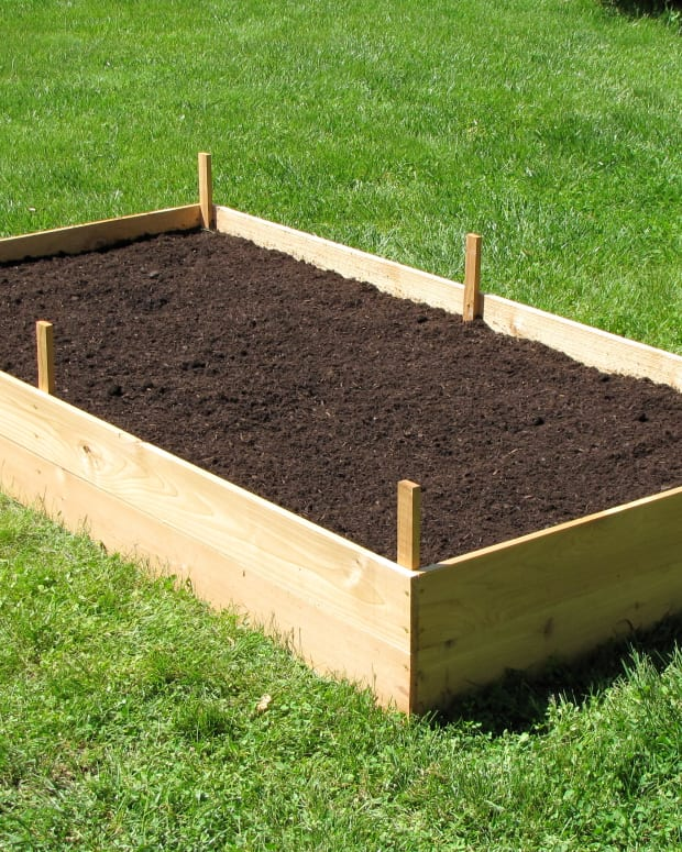 how-to-build-a-cedar-raised-garden-bed
