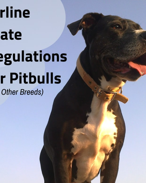 flying-with-your-pitbull-new-iata-cr-82-crate-requirements