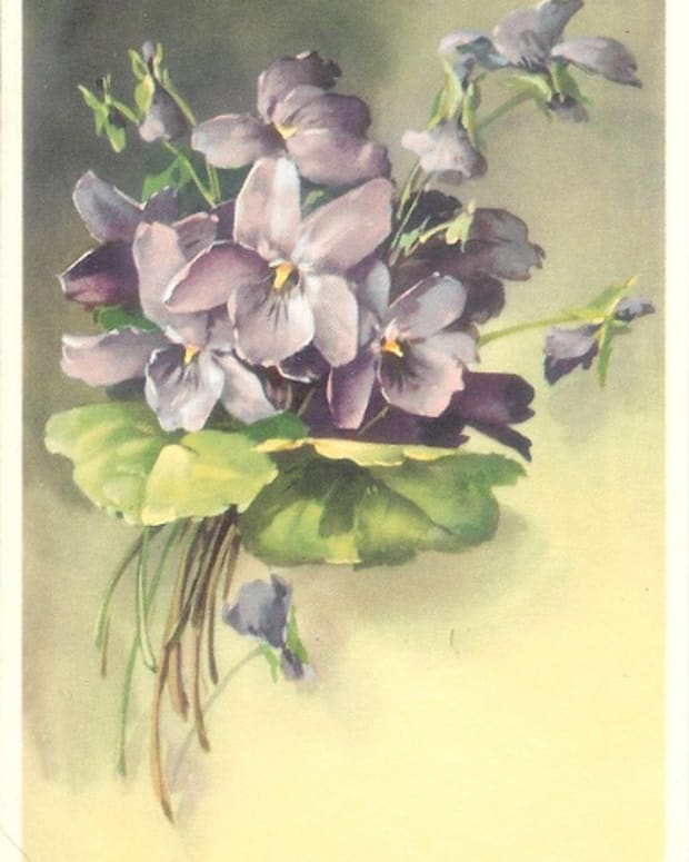 vintage-alfred-mainzer-flower-postcards