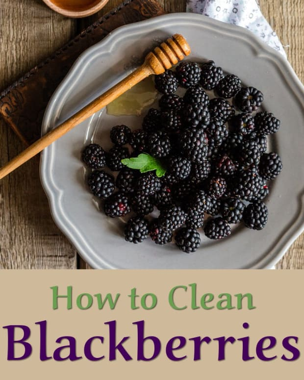 how-to-clean-blackberries-after-picking