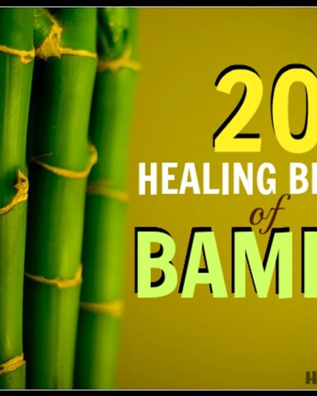 20-healing-benefits-of-bamboo