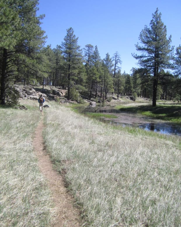 best-short-hikes-in-flagstaff-arizona