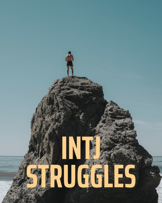 24-struggles-all-intjs-can-understand