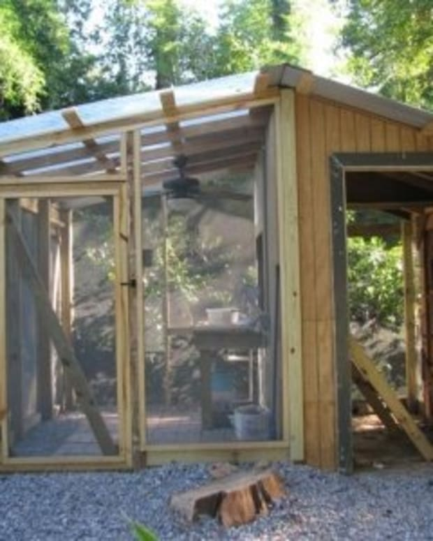 chicken-coop-greenhouse-construction