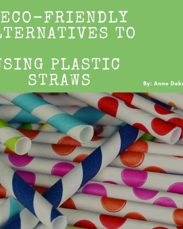 5-eco-friendly-alternatives-to-using-plastic-straws