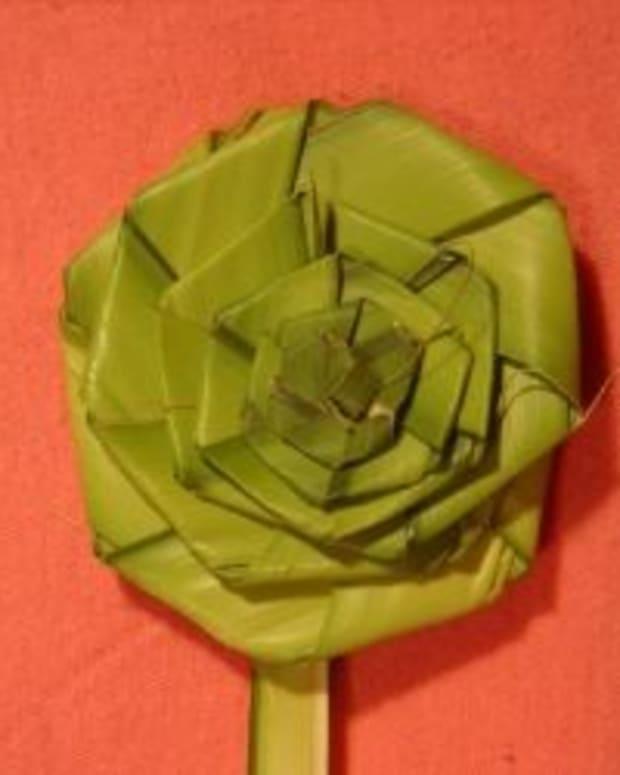 palm-rose