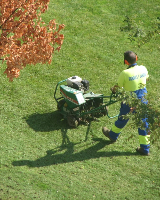 lawn-care-maintenance-tasks-for-fall