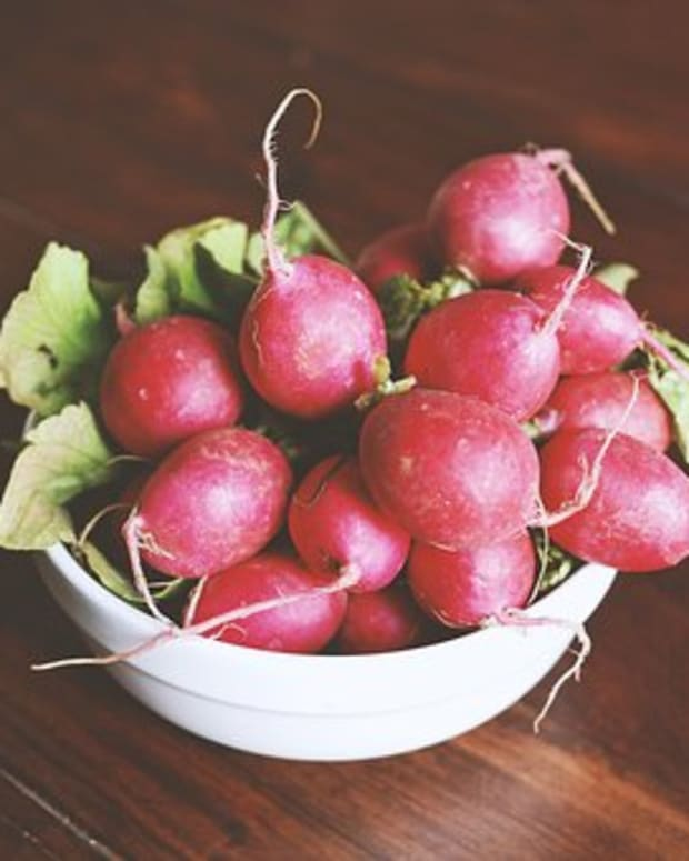 a-guide-to-growing-radishes
