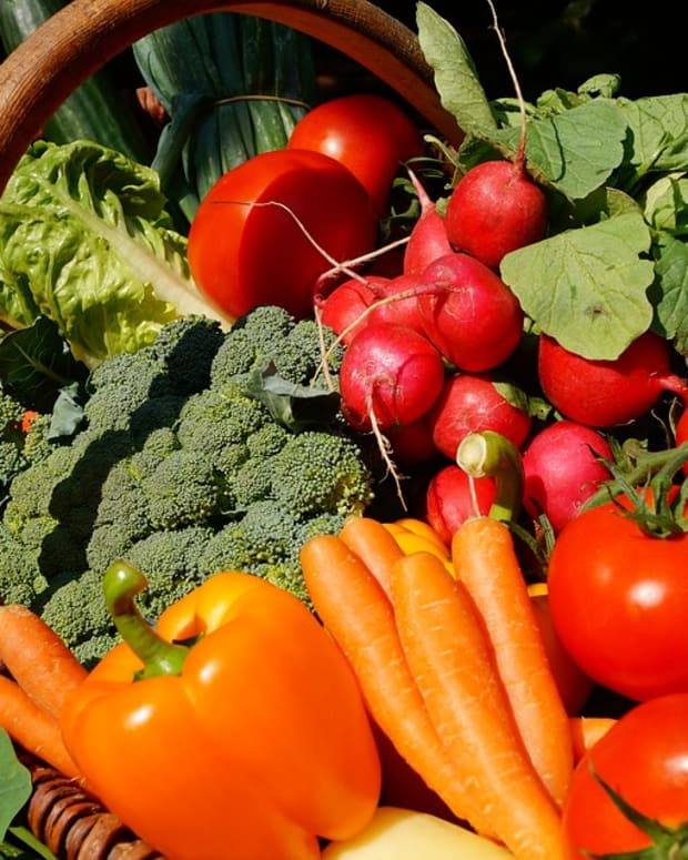 what-are-the-quickest-vegetables-you-can-grow-and-how-to-start-growing-them-today