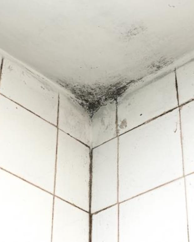 tips-for-painting-moldy-bathroom-walls-and-ceilings
