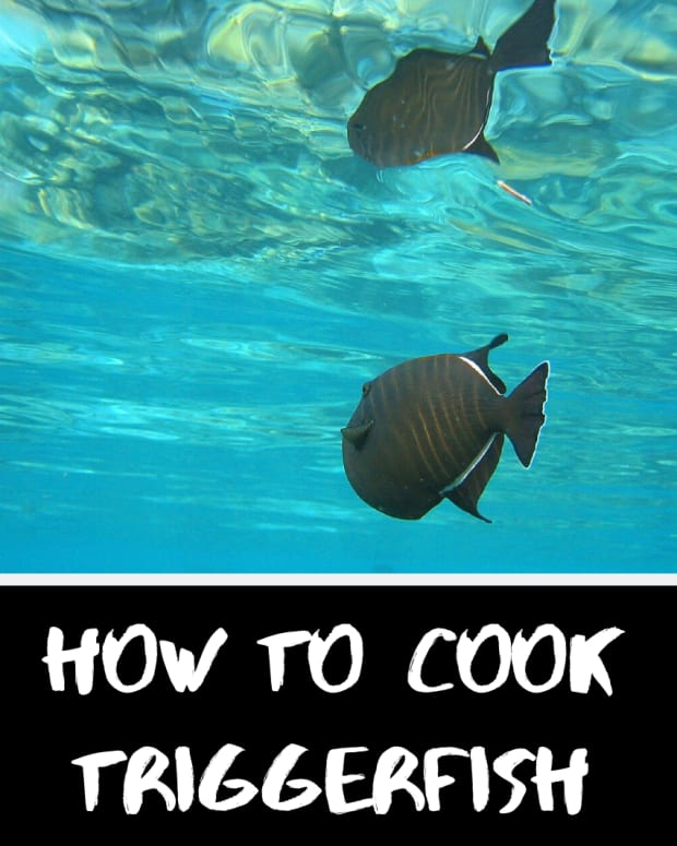 cook-triggerfish-in-foil-on-grill-or-oven-bake-then-clean-up
