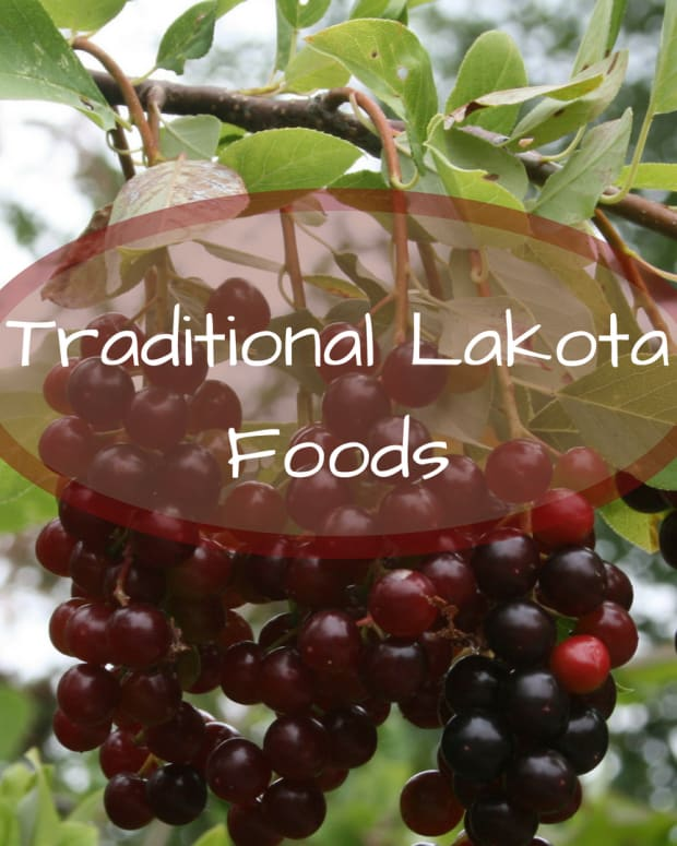lakota-traditional-foods