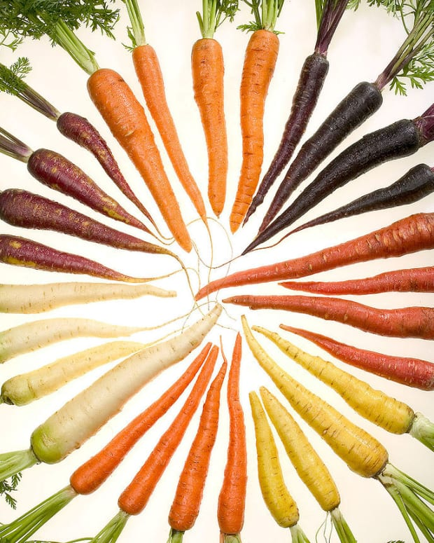 a-guide-to-growing-carrots