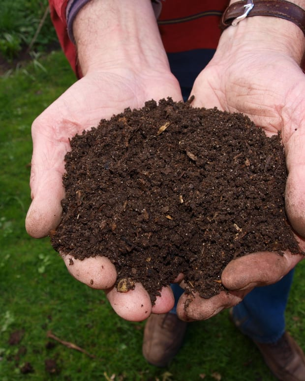 benefits-of-composting