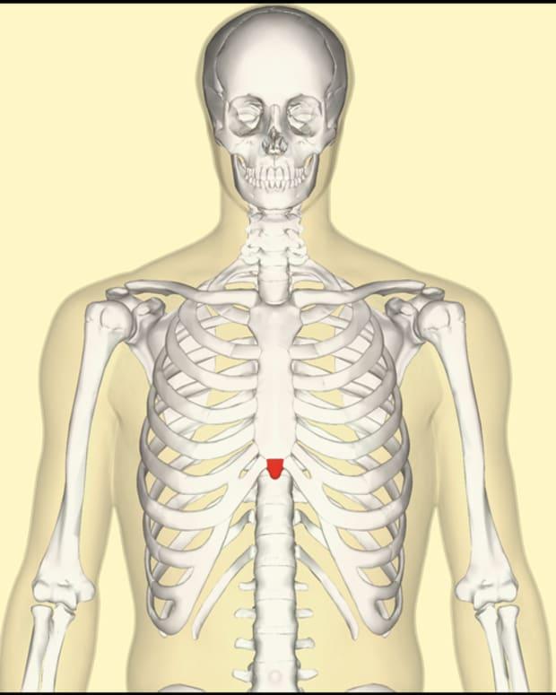 xiphoid-process-pain