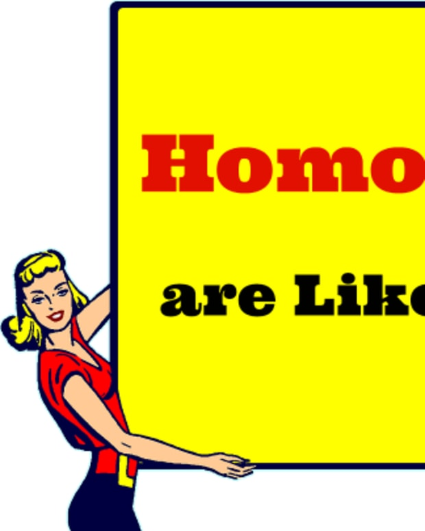 the-naughty-grammarian-homonyms-homographs-homophones