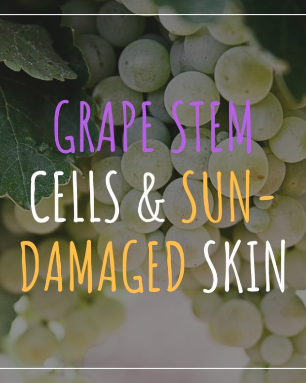 grape_stem_cell_extract_reverses_signs_of_sun_damaged_skin