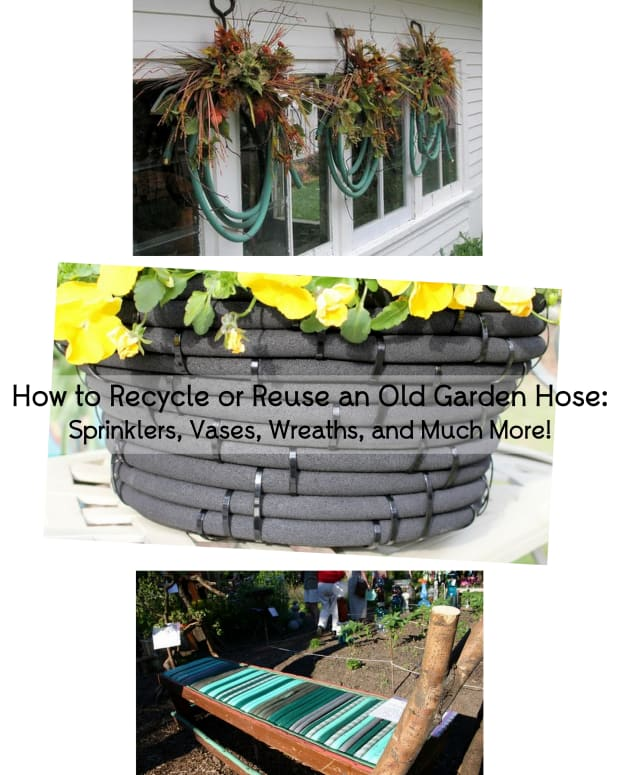 how-to-recycle-or-reuse-an-old-garden-hose