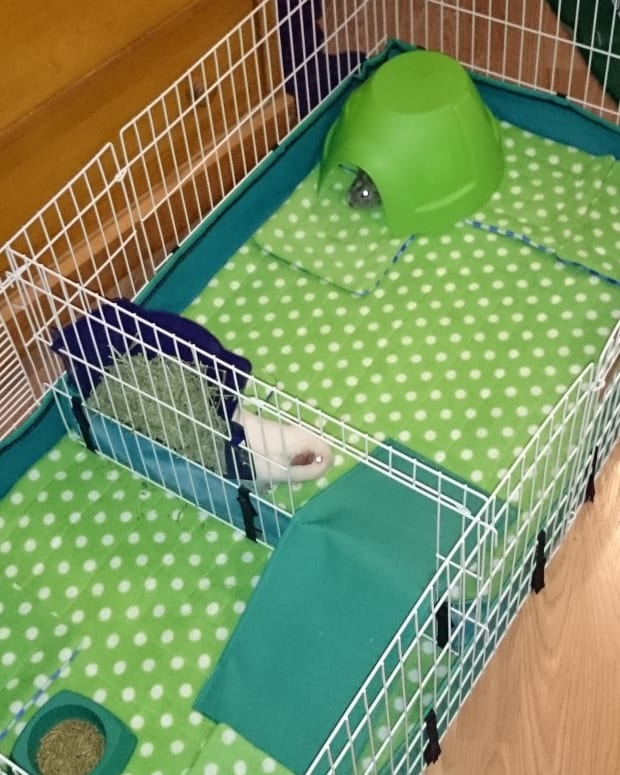 reusable-guinea-pig-cage-liner-sewing-tutorial