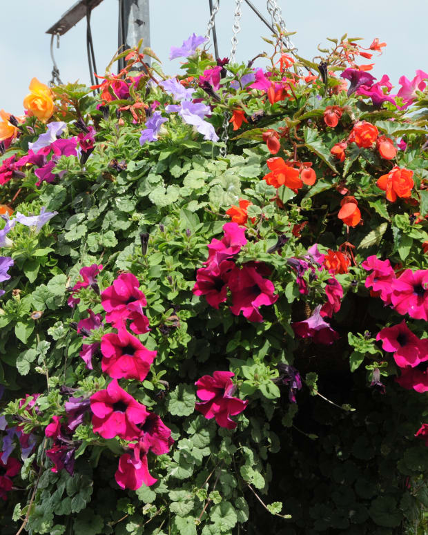 how-to-make-cheap-hanging-basket-liners-from-thick-woolen-sweaters