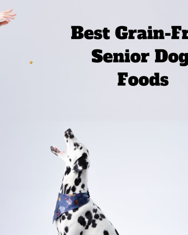 reviews-of-grain-free-senior-dog-foods