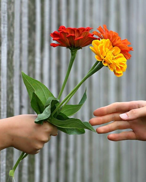 the-art-of-expressing-gratitude