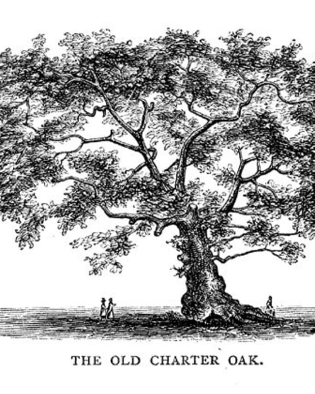 the-charter-oak