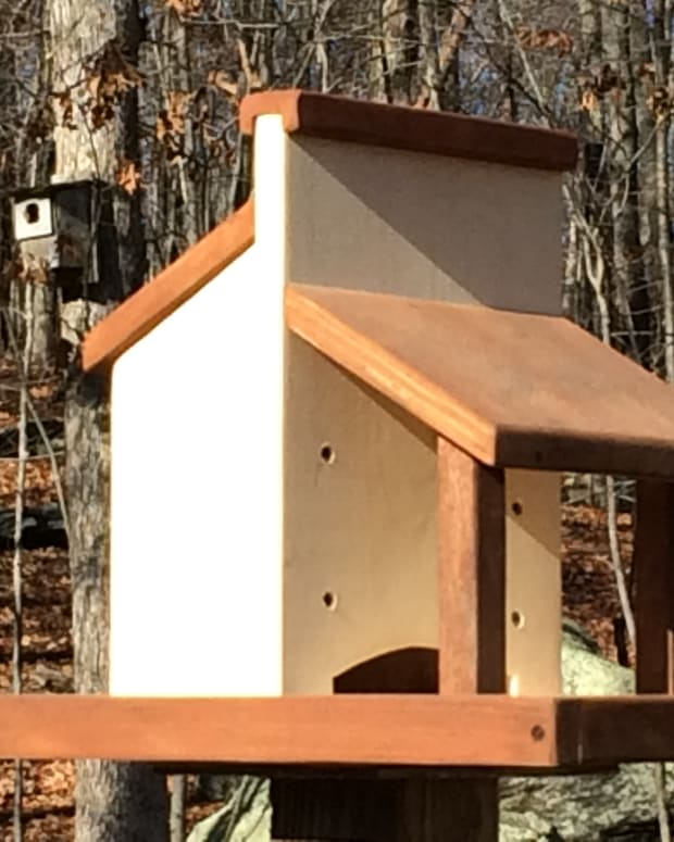 diy-platform-bird-feeder-plans
