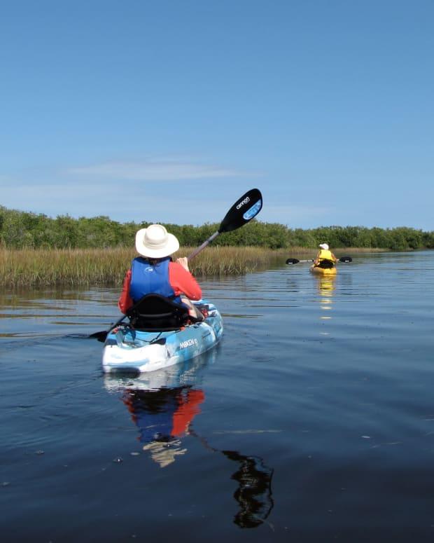 kayaking-werner-boyce-salt-springs-state-park-port-richey-florida