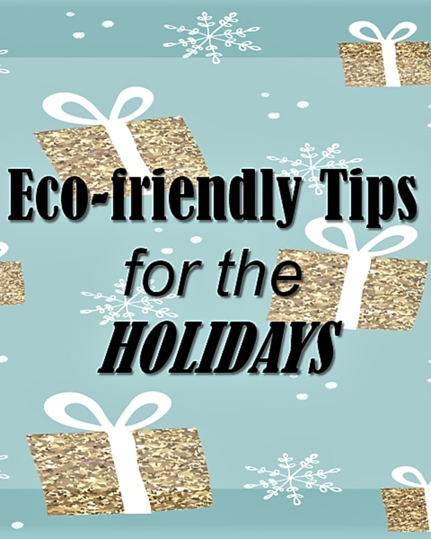 eco-friendly-tips-for-the-holidays
