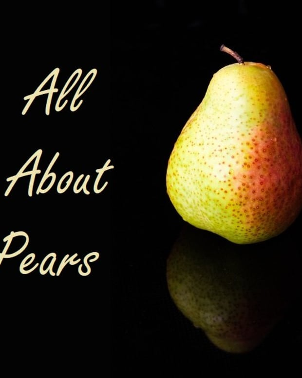 all-aboutfruits-and-vegetables-pears
