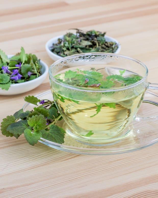 drying-herbs-for-herbal-tea