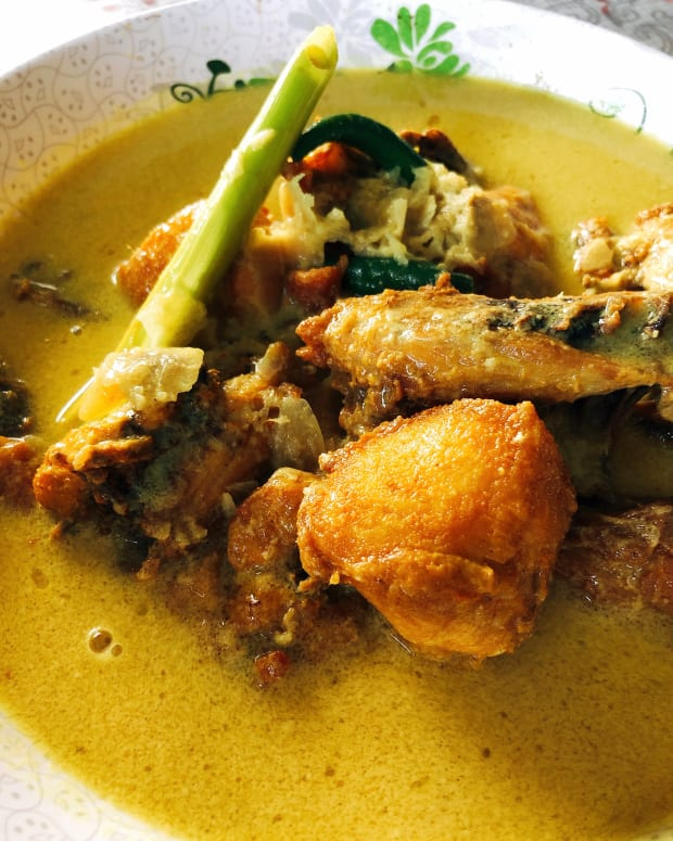 how-to-cook-ayam-masak-lemak-chicken-with-creamy-coconut-milk