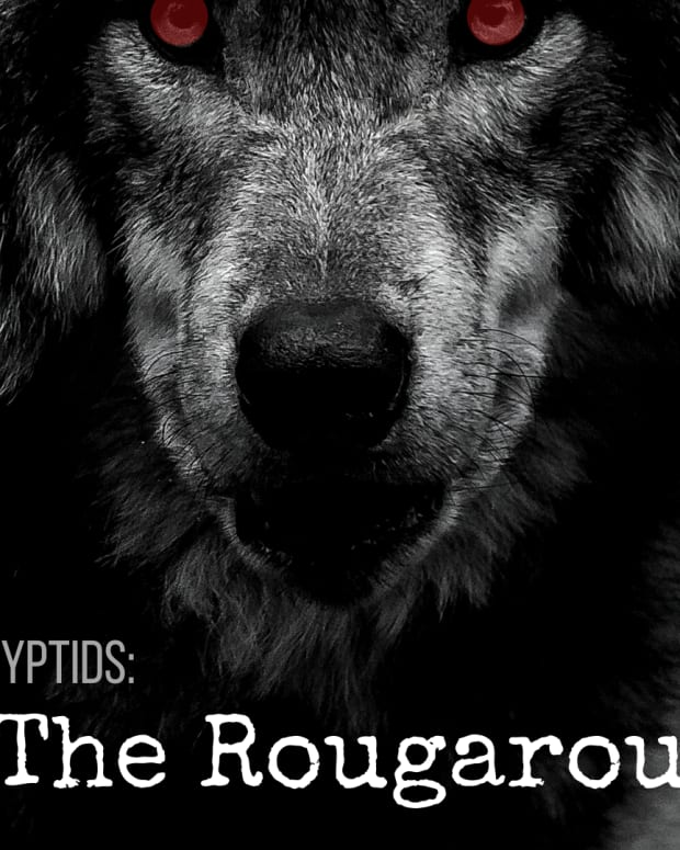 the-rougarou-louisianas-cajun-werewolf